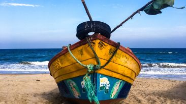 beach-blue-boat-1012271 1