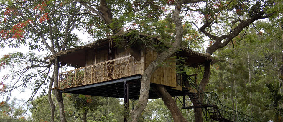Tranquil Resort,  Wayanad Tree House