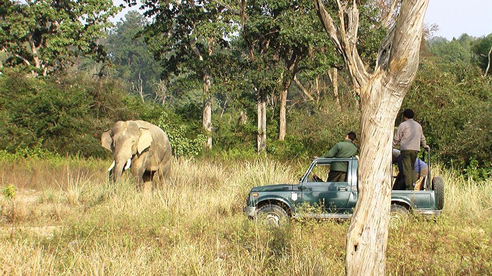 The Riverview Retreat Corbett Activity jeep Safari at Bijrani