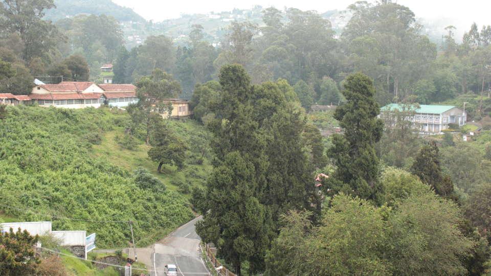 Jayaraj Residency, Kodaikanal Kodaikanal View from Standard Room Jayaraj Residency Kodaikanal 7