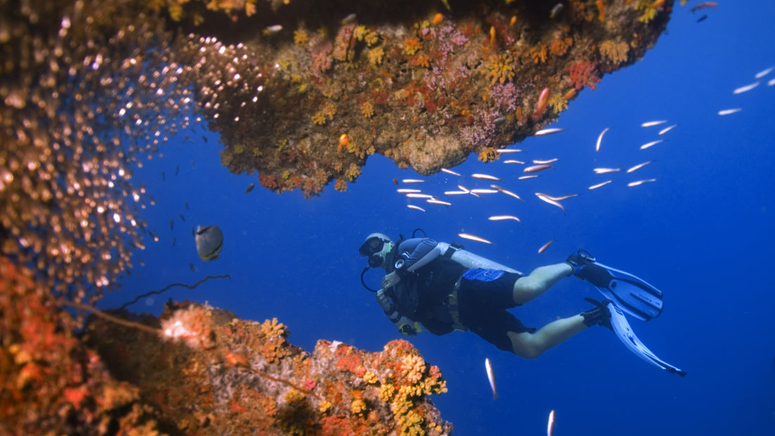 Scuba diving in Andaman Photo by Jillian Frits