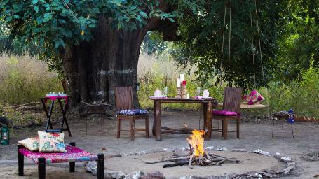 Tales by Fire place, Bush Dinner,  Rosa Bandhavgarh Meadows 3