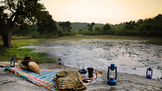 Sun Downers, Rosa Bandhavgarh Meadows