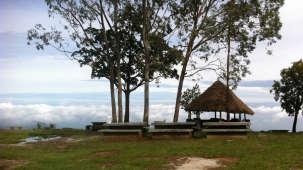 Heaven's Ledge - Campsite, Yercaud Yercaud heavens ledge campsite yercaud 6