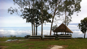 Heaven's Ledge - Campsite, Yercaud Yercaud heavens ledge campsite yercaud 6