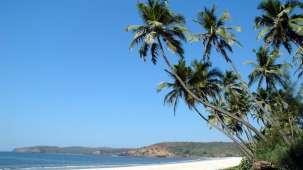 Ginger Tree Hotels, Goa  anjuna