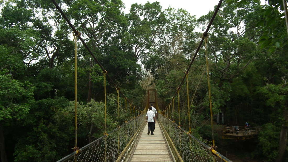 Nisargadhama hanging bridge, Amanvana Resort Spa, places to visit in Coorg