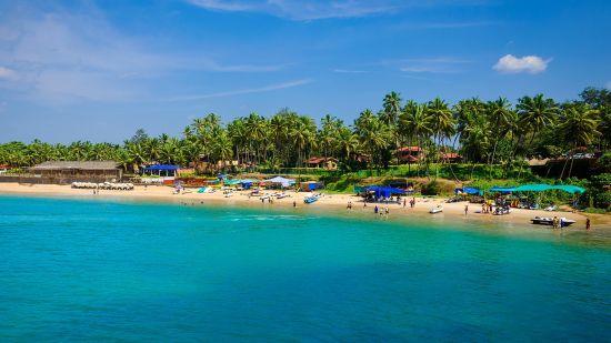 Renest Goa