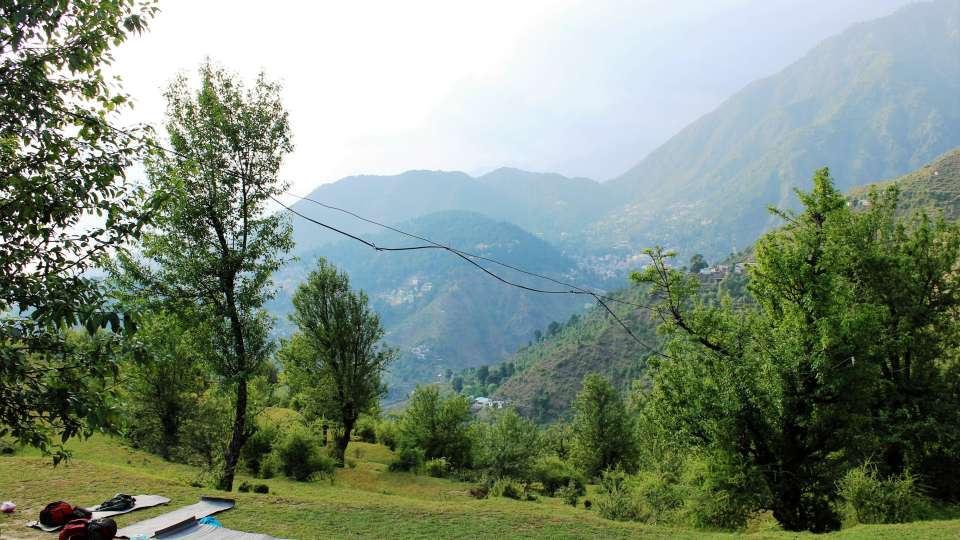 Green Getaway Camps  Green Getaway Camps Dharamsala
