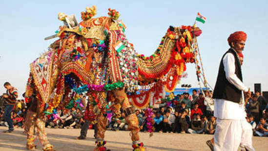 Camel Safari Sarovar Portico Jaipur