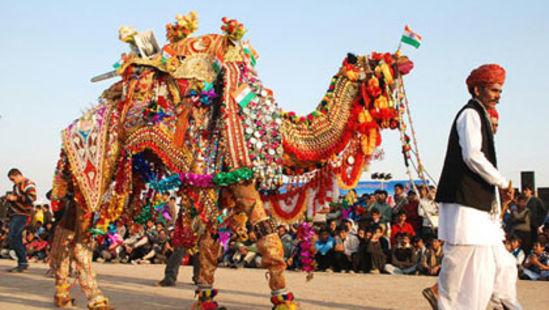 Camel Safari at Hotel Sarovar Portico Jaipur