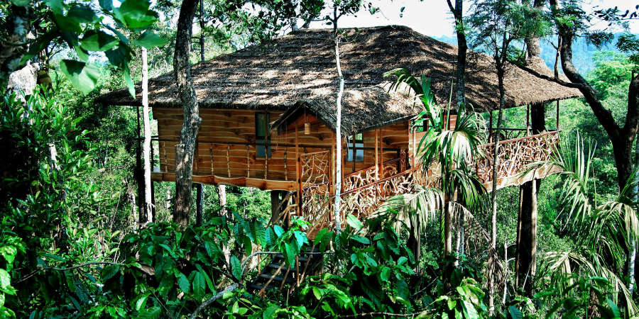 alt-text Tranquil Resort, Wayanad Wayanad Tree house at Tranquil Resort Wayanad Kerala