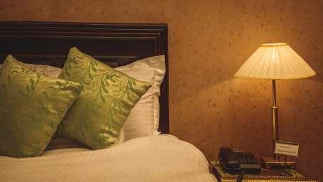Deluxe Rooms Hotel Meenakshi Udaipur 5