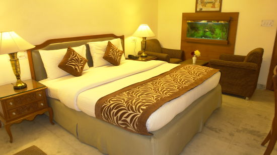 Hotel Hari Piorko New Delhi Deluxe Room Hotel Hari Piorko Delhi 7