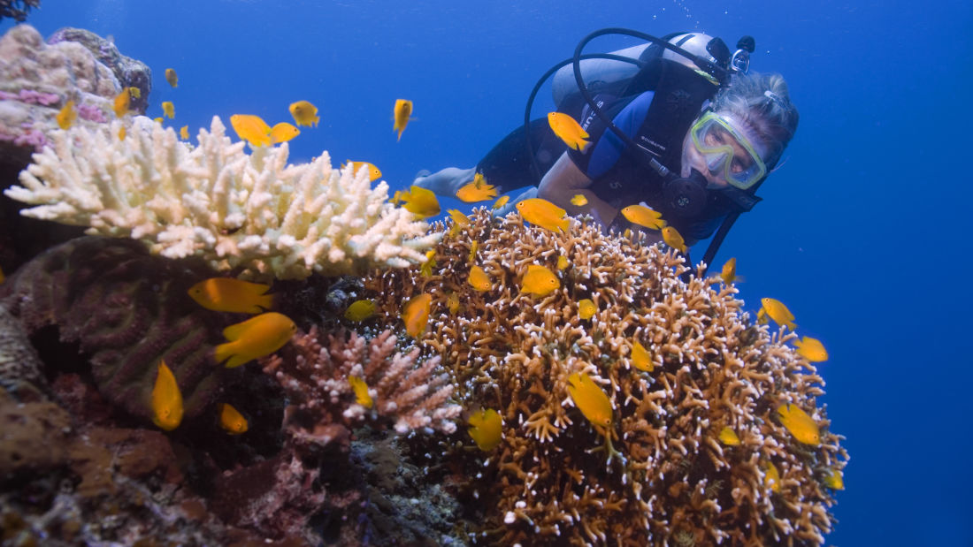 Fun diving in Andaman Photo by Jillian Frits