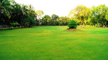 5 -Lawns at Ambassador Ajanta Aurangabad