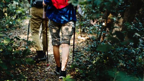 activity-adults-adventure-1246955 seizoq