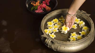 Spa Vasundhara Sarovar Premiere Vayalar