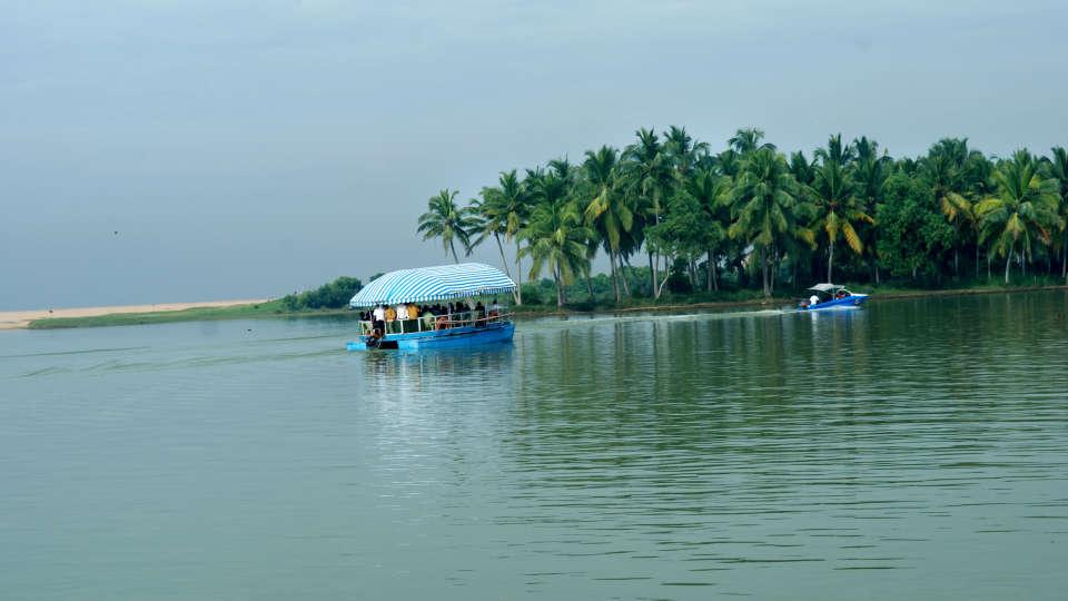 Estuary Backwater 2