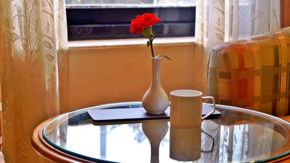 Hotel Room in Mumbai, The Ambassador, Stay in Mumbai  349