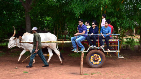 Bullock cart rides at Our Native Village - Bangalore Resort 160