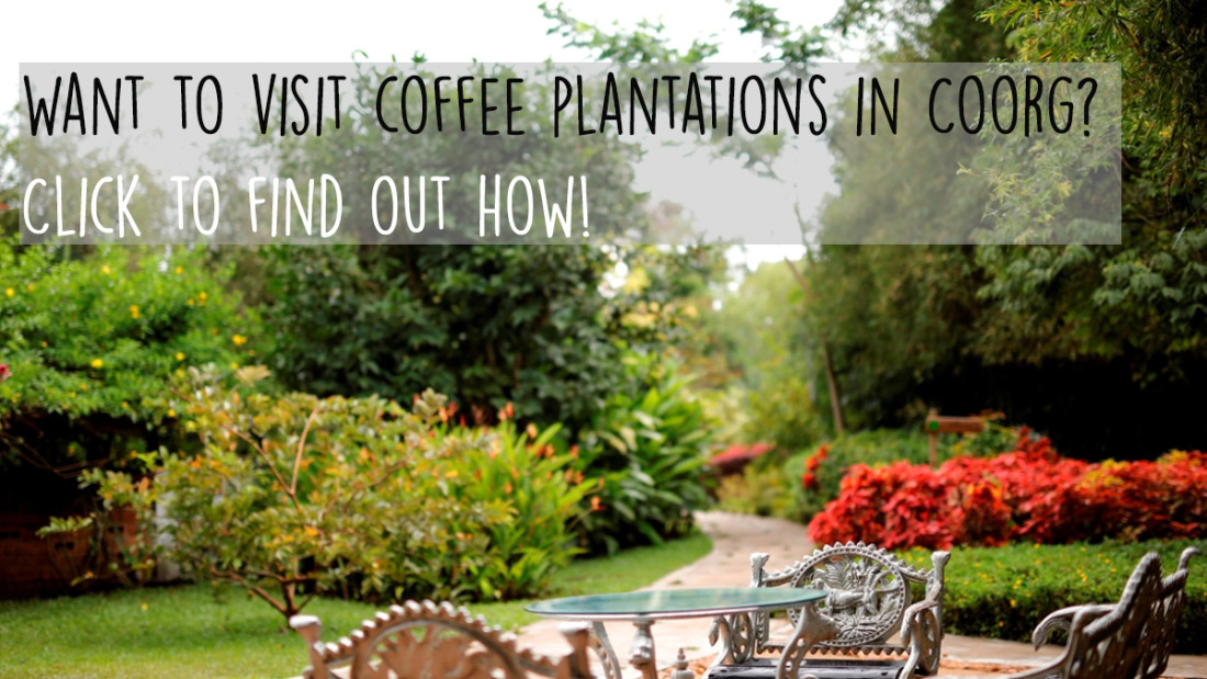 Amanvana Spa - Luxury Resort in Coorg Coorg coffee plantations - blog