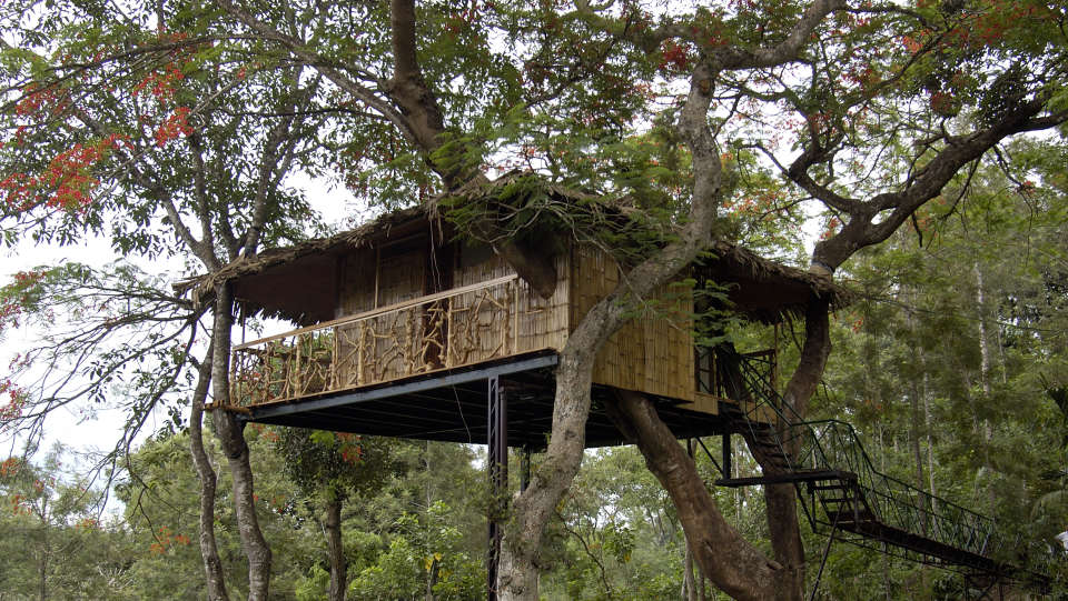 Tree Houses Tranquil Resorts Wayanad Resorts In Wayanad