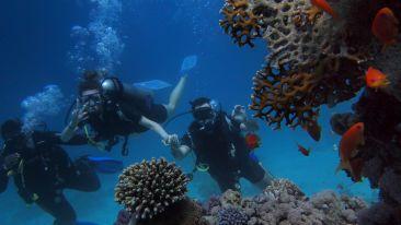 Scuba Diving in Andaman, Beach Wedding in Andaman, Destination Wedding in Andaman