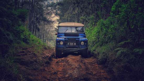 Jeep Safari at Corbett National Park