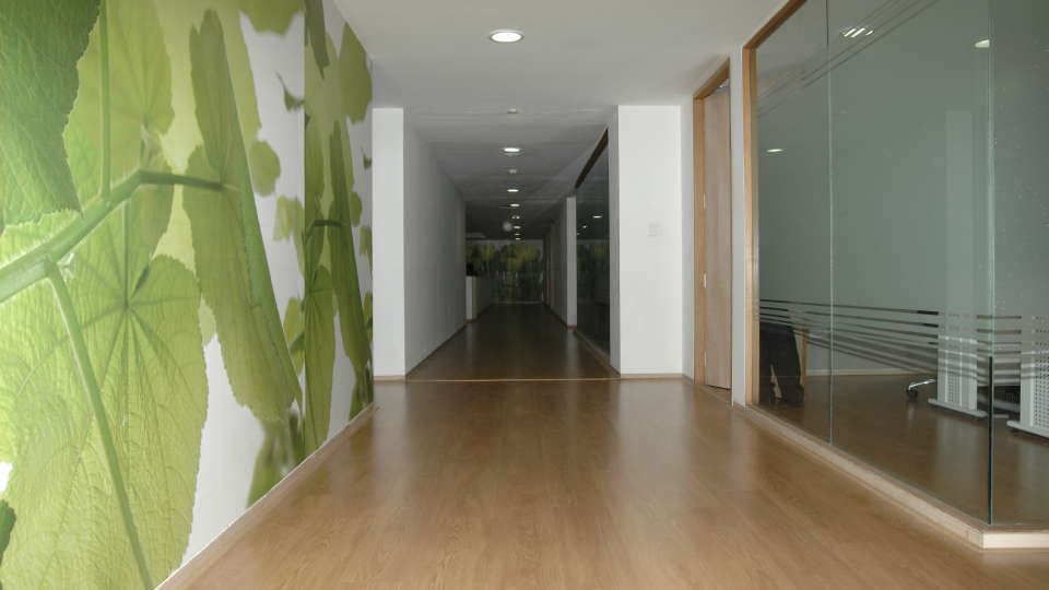 Corridor at Davanam Sarovar Portico Bangalore, Hotels in Bangalore 1