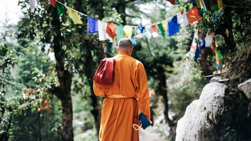 adult-back-view-buddha-750896