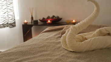 Canva - Towel Formed Into Swan on Bed