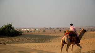 Camel Safari Tao Experience Jaisamler