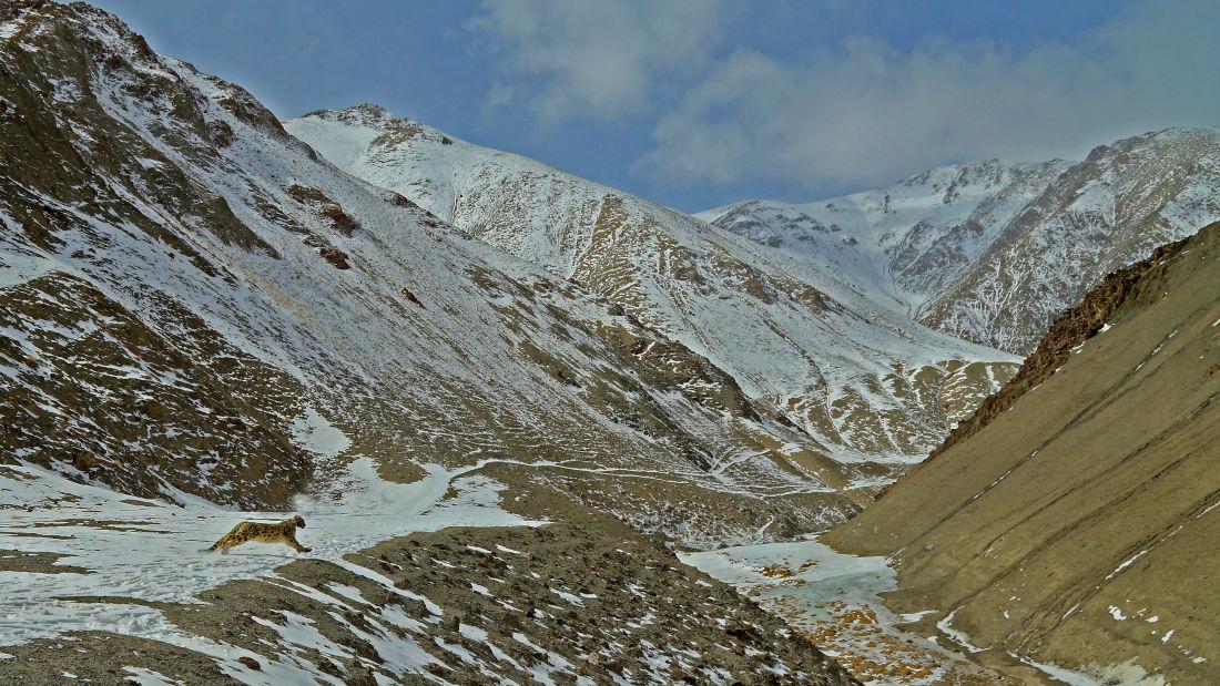 Jehan Numa Expeditions