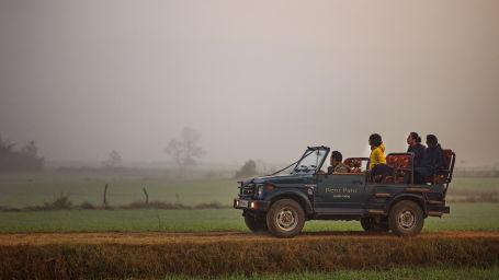 Jeep Safari Reni Pani Jungle Lodge