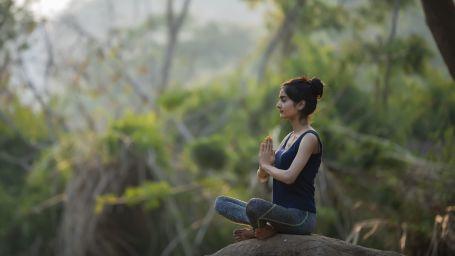 Wellness Momenet - Yoga 2