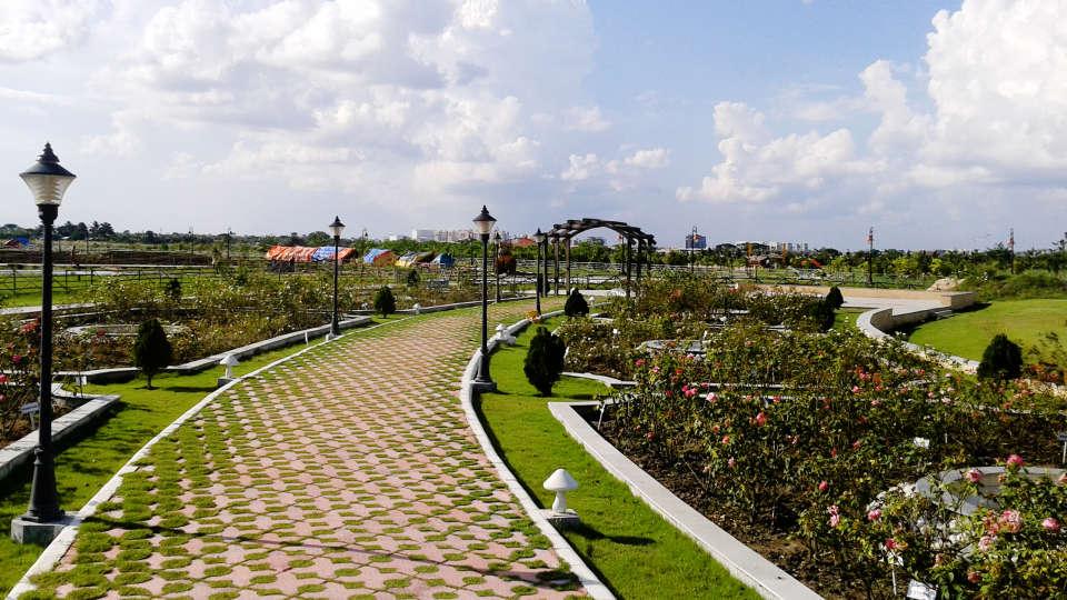 Walkway through the rose garden