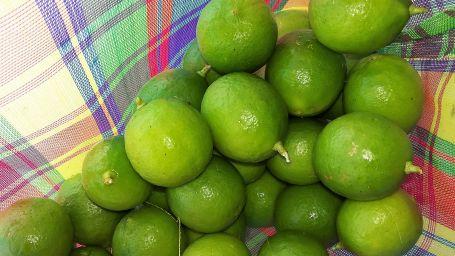 Lime season Mexico