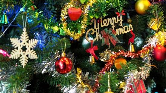 Christmas and New year at Hotel Maharana Inn 2
