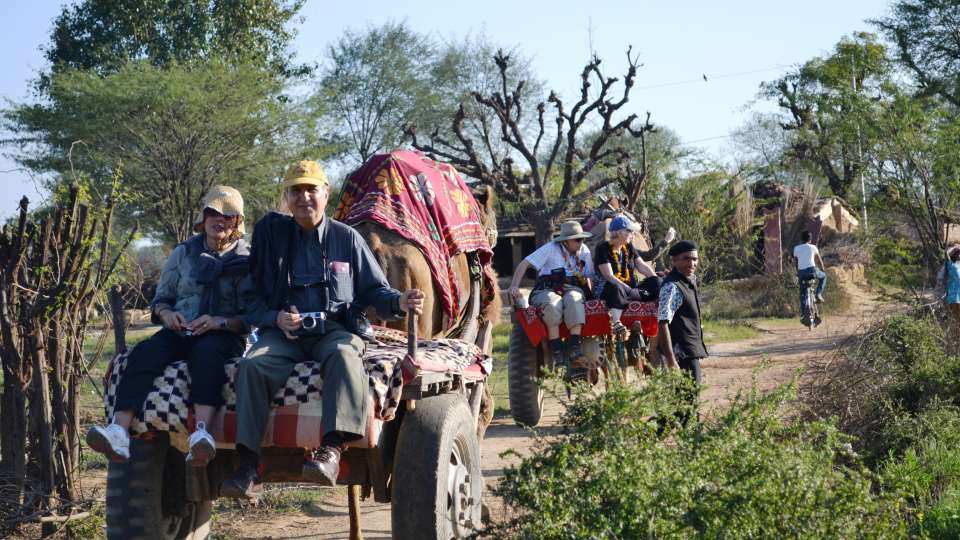 Umaid Lake Palace Dausa  Get a taste of rural india - Camel Cart Ride mustard fields