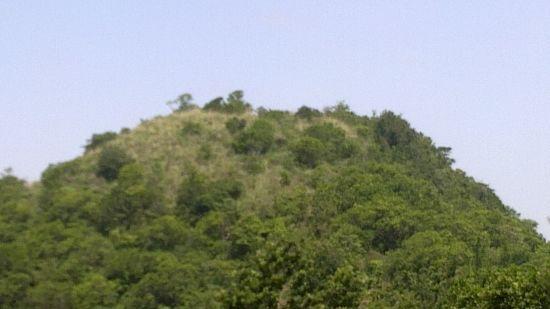 Kurisumala at Poetree Sarovar Portico Thekkady, best hotels in thekkady