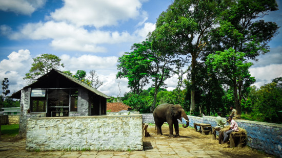 Amanavan Resort Spa Luxury resort in Coorg Popular coorg attractions 7