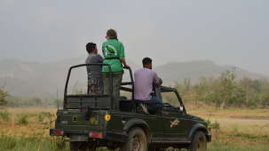 Jeep Safari adventure at Wild Brook Retreat, Rajaji National Park