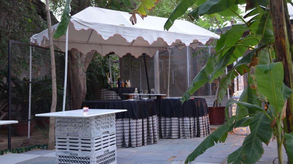 Hotel Clarks Amer, Jaipur Jaipur Wolf Sora Hotel Clarks Amer Jaipur 5