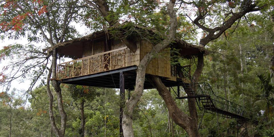Tranquil Resort, Wayanad Wayanad tree house exterior tranquil resort kerala