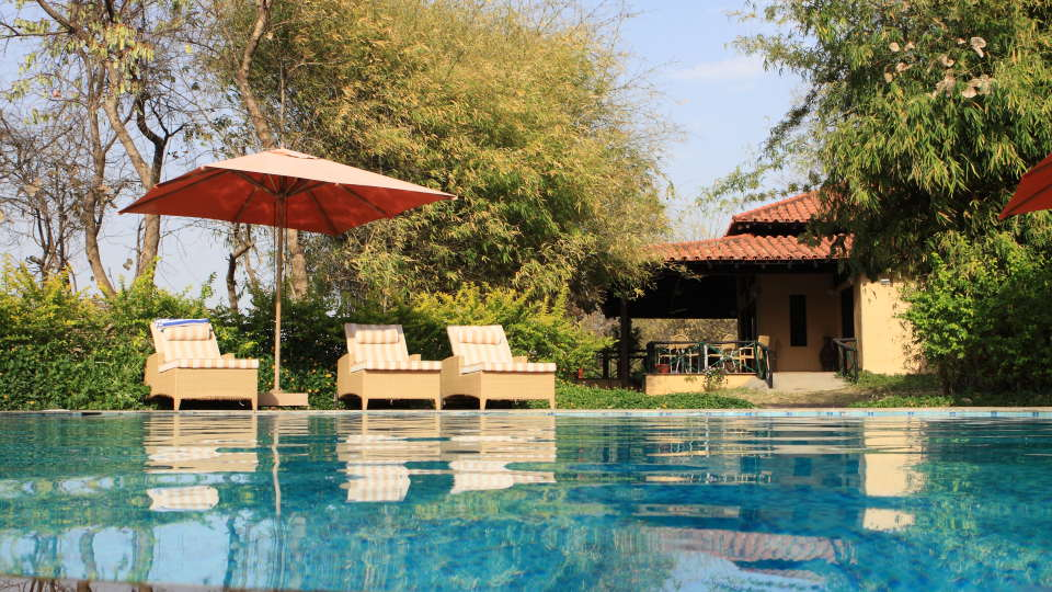 Swimming Pool at Infinity Resorts Bandhavgarh, Hotels in Madhya Pradesh 2