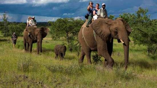 Leisure Hotels  Elephant Safari Corbett Leisure Hotels
