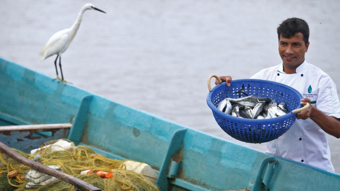 Fishermans Delight Niraamaya Retreats Surya Samudra Kovalam Resort