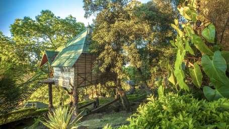 Great Escapes Resort, Munnar Munnar Tree House Great Escapes Resorts Munnar 3