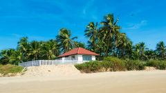 Sea Cottage 6